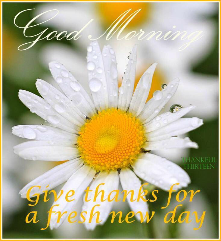 good morning give thanks for a new day pictures photos and images