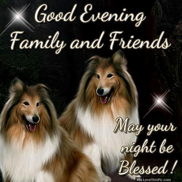 Good Evening Family And Friends May Your Night Be Blessed