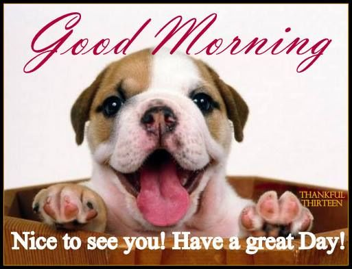 Good Morning Nice To See You Pictures, Photos, and Images