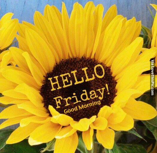 Hello Friday Good Morning Pictures Photos And Images
