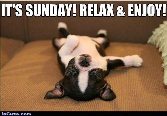 251022-It-s-Sunday-Relax-Enjoy-.jpg