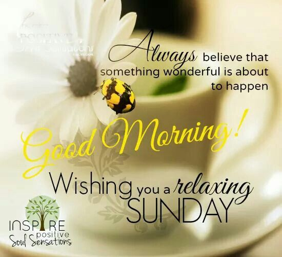 Good Morning Sunday Images And Quotes Happy Funday Wishes: Good Morning, Wishing You A Relaxing Sunday Pictures