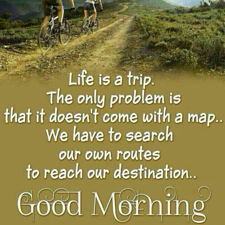 Morning Life Quotes Enchanting Good Morning Life Is A Trip Pictures Photos And Images For
