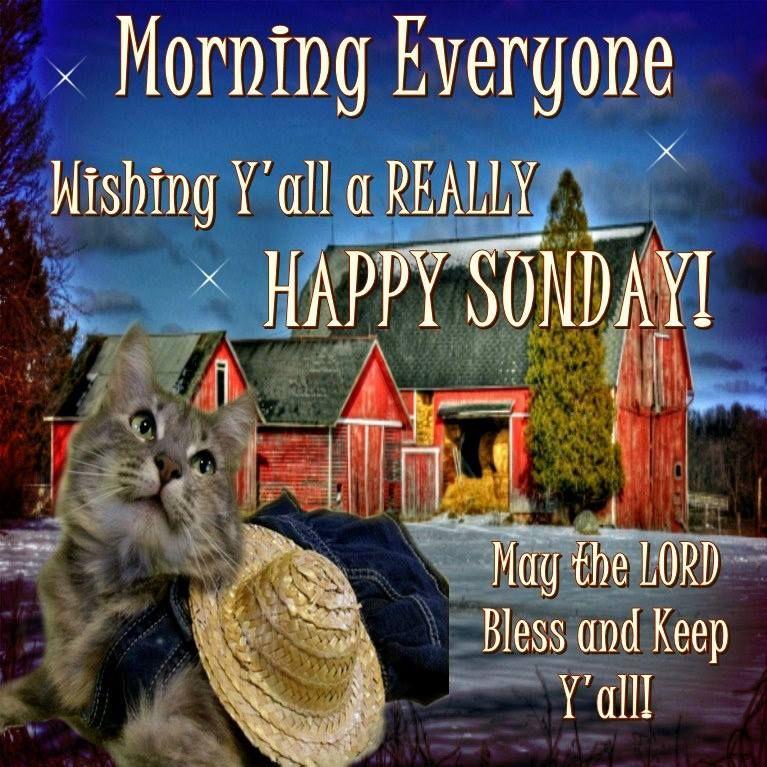 Morning Everyone Wishing Yall A Really Happy Sunday
