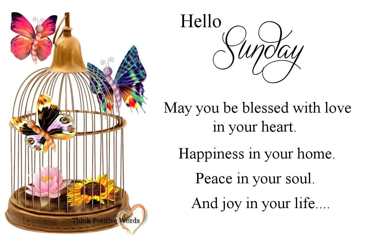 Hello wednesday pictures photos and images for facebook tumblr - Hello Sunday May You Be Blessed
