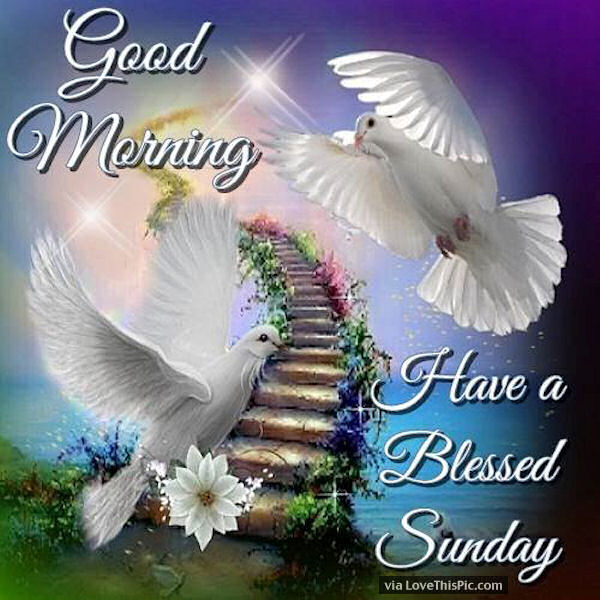 Good Morning Sunday God Photos : Good morning have a blessed sunday beautiful quote