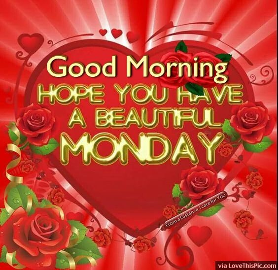 Good Morning Beautiful You Facebook : Good morning hope you have a beautiful monday pictures