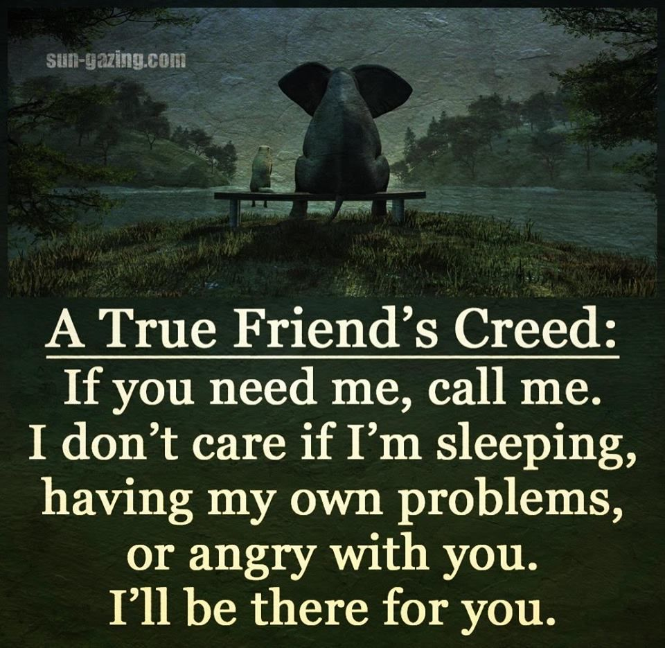 Funny Random Quotes A True Friend's Creed Pictures Photos And Images For Facebook