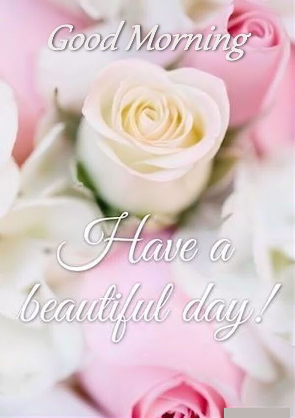 Wonderful Good Morning Have A Beautiful Day Spring Image Quote