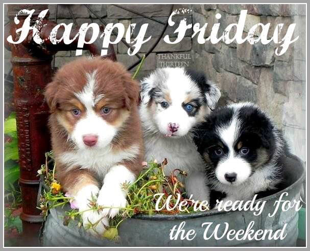Happy Friday We Are Ready For The Weekend Pictures Photos