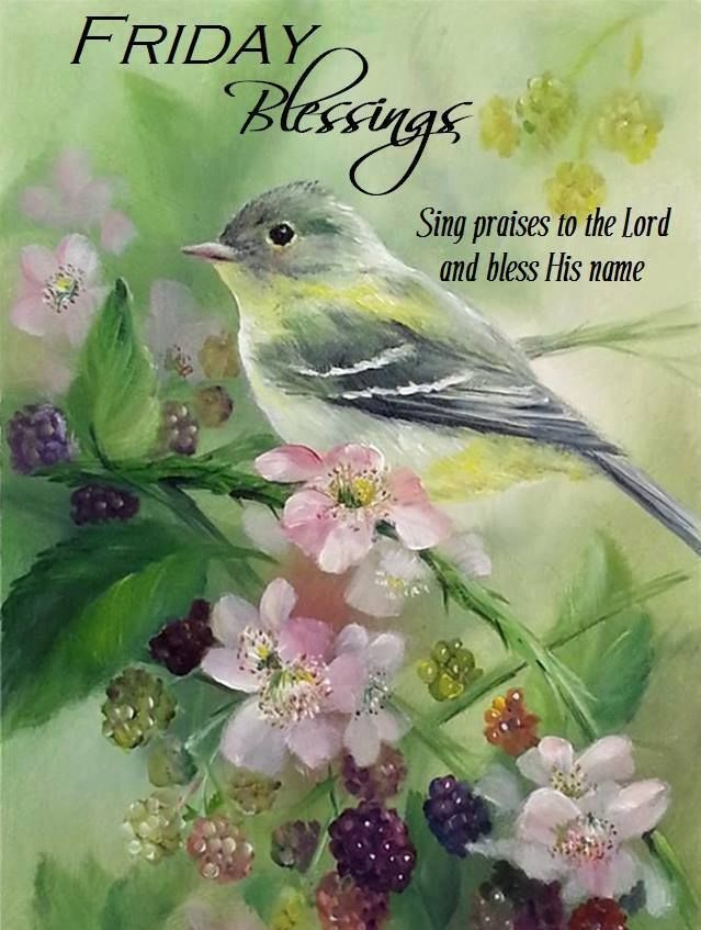 Friday Blessings Sing Praise Pictures, Photos, and Images