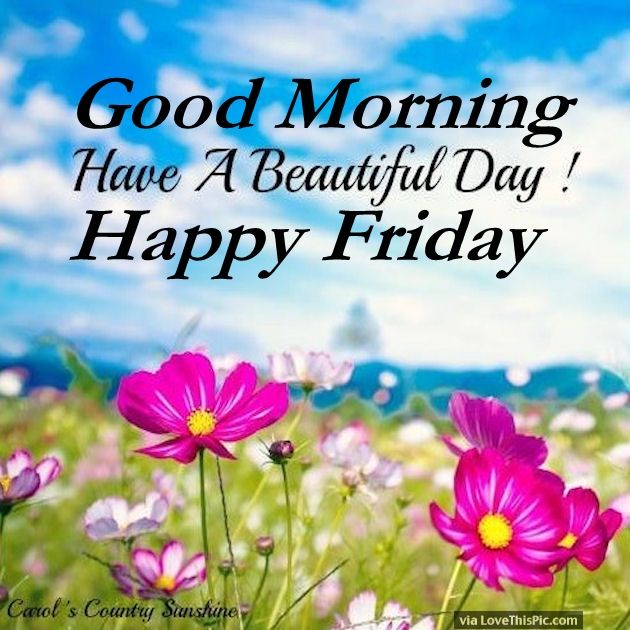 good morning have a beautiful day happy friday pictures