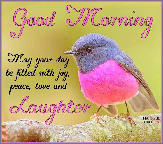 Image result for good morning laughter quotes