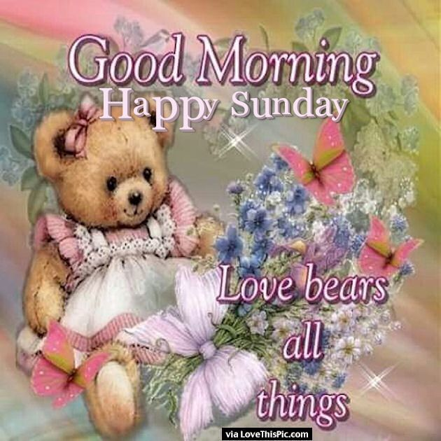 Good Morning Sunday Love Pics : Good morning happy sunday love bears all things pictures
