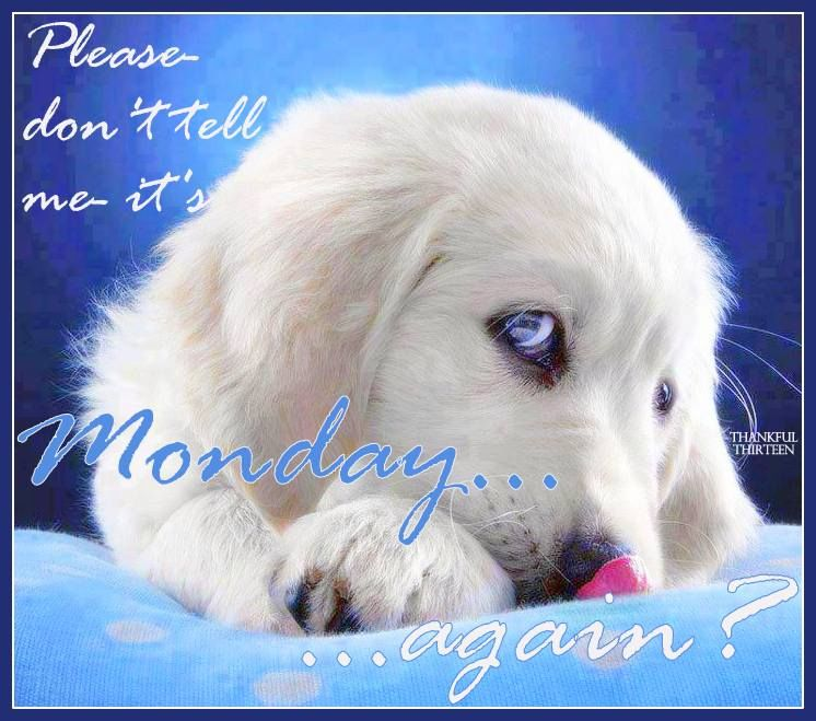 Image result for good morning it's monday again images
