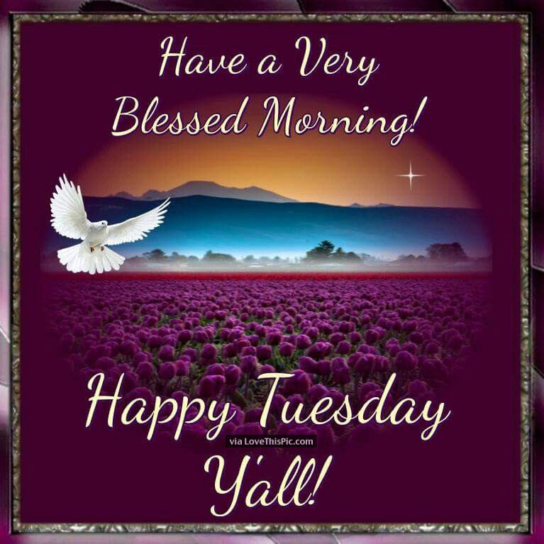 252671-Have-A-Very-Blessed-Morning-Happy-Tuesday.jpg
