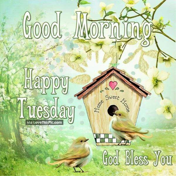 God Bless You Good Morning Happy Tuesday Pictures Photos