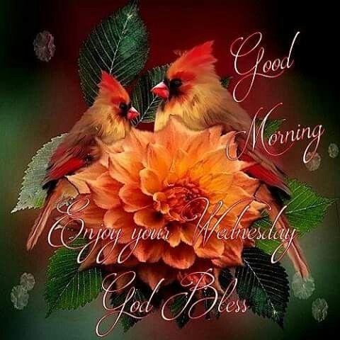 http://www.lovethispic.com/uploaded_images/252745-Good-Morning-Enjoy-Your-Wednesday-God-Bless.jpg
