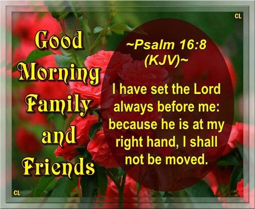 Good Morning Beautiful Family : Good morning family and friends i have set the lord