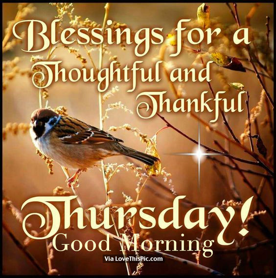 Thankful Thursday Quotes: Blessings For A Thoughtful And Thankful Thursday, Good