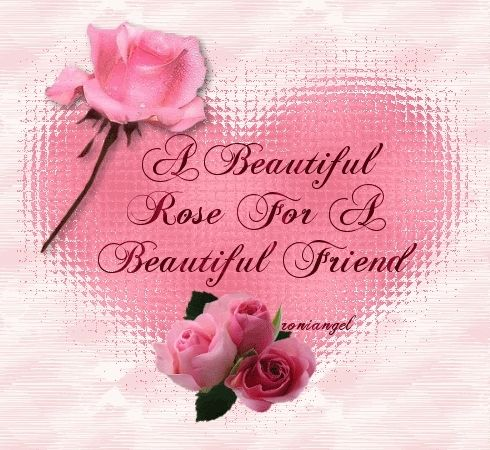 A Beautiful Rose For Friend
