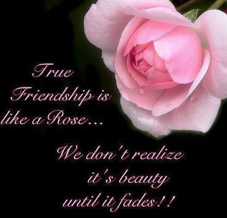 True Friendship Is Like A Rose.... Pictures, Photos, and Images ...