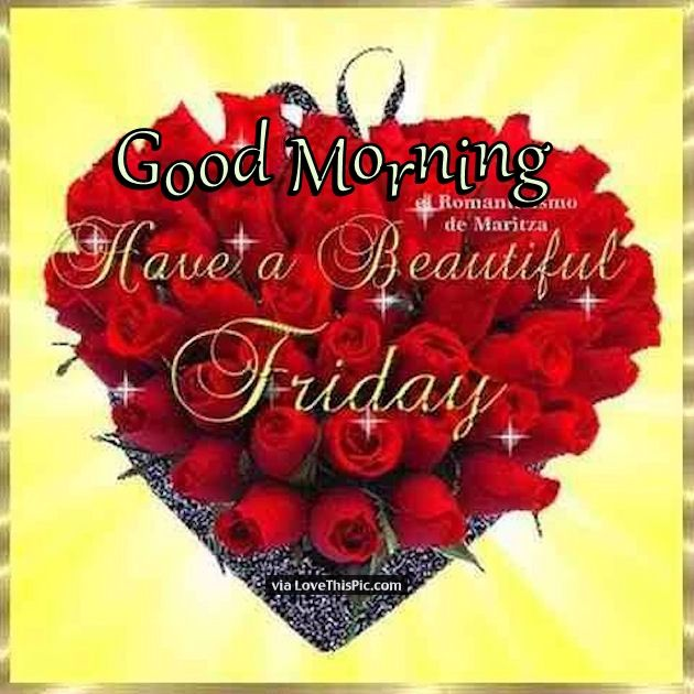 good morning have a beautiful friday quote with roses