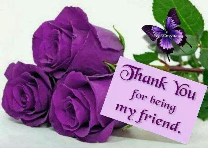 Thank You For Being My Friend Pictures Photos And Images