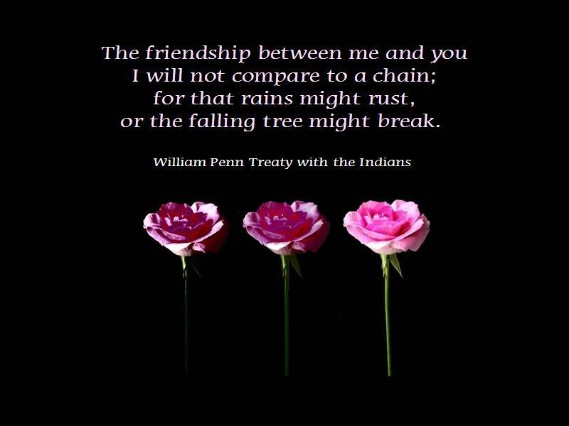 The Friendship Between Me And You.
