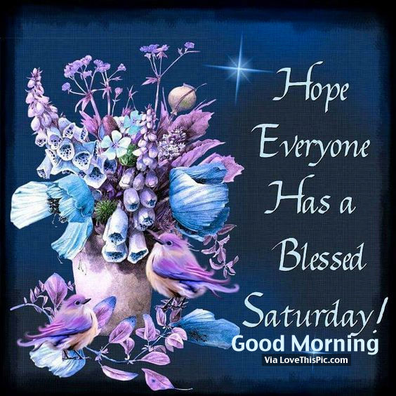 Good Morning Everyone Saturday : Hope everyone has a bless saturday good morning pictures