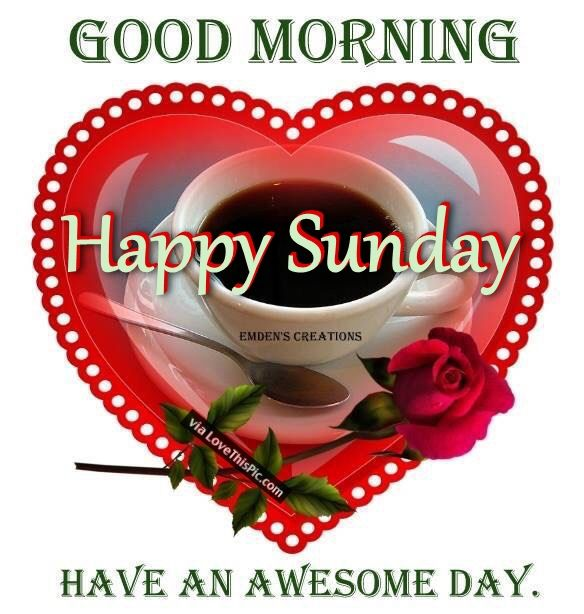 Good Morning Happy Palm Sunday : Good morning happy sunday have an awesome day pictures