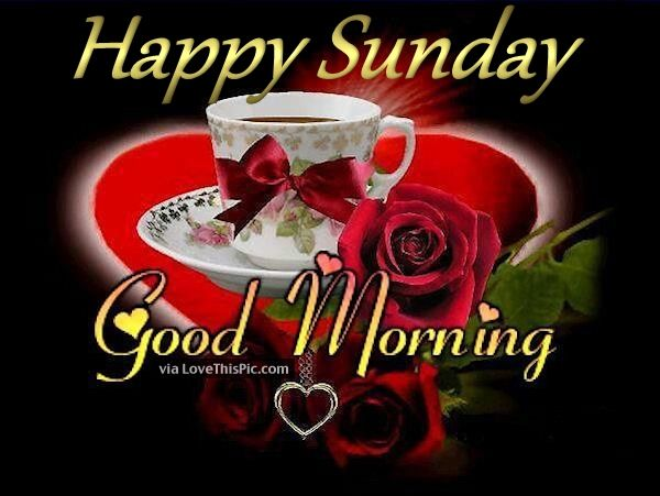 Good Morning Sunday Rose : Good morning happy sunday coffee quote pictures photos