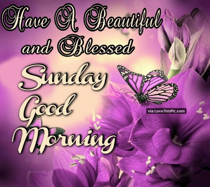 Have A Beautiful And Blessed Sunday Good Morning Pictures