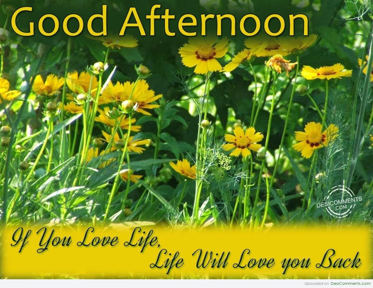 Good Afternoon Pictures, Photos, And Images For Facebook