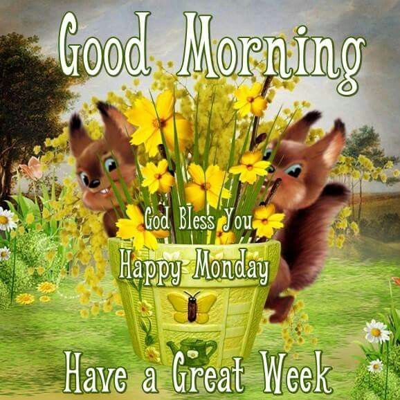 Good Morning, God Bless You, Happy Monday, Have A Great Week Pictures, Photos...