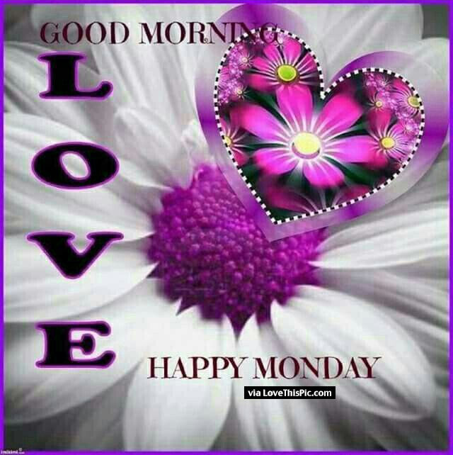 Good Morning Quotes My Wife: Good Morning Love Happy Monday Pictures, Photos, And