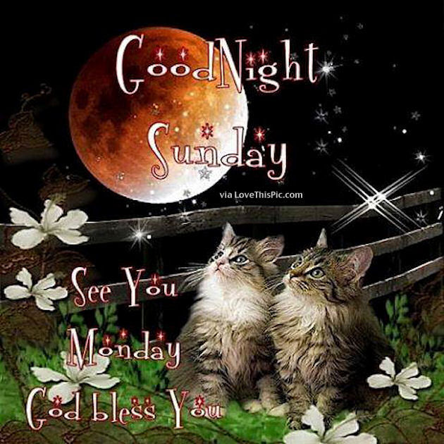 Good Night Sunday Pictures Photos And Images For