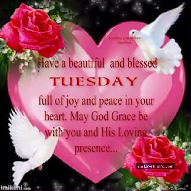Have a beautiful an dblessed tuesday pictures photos and images for