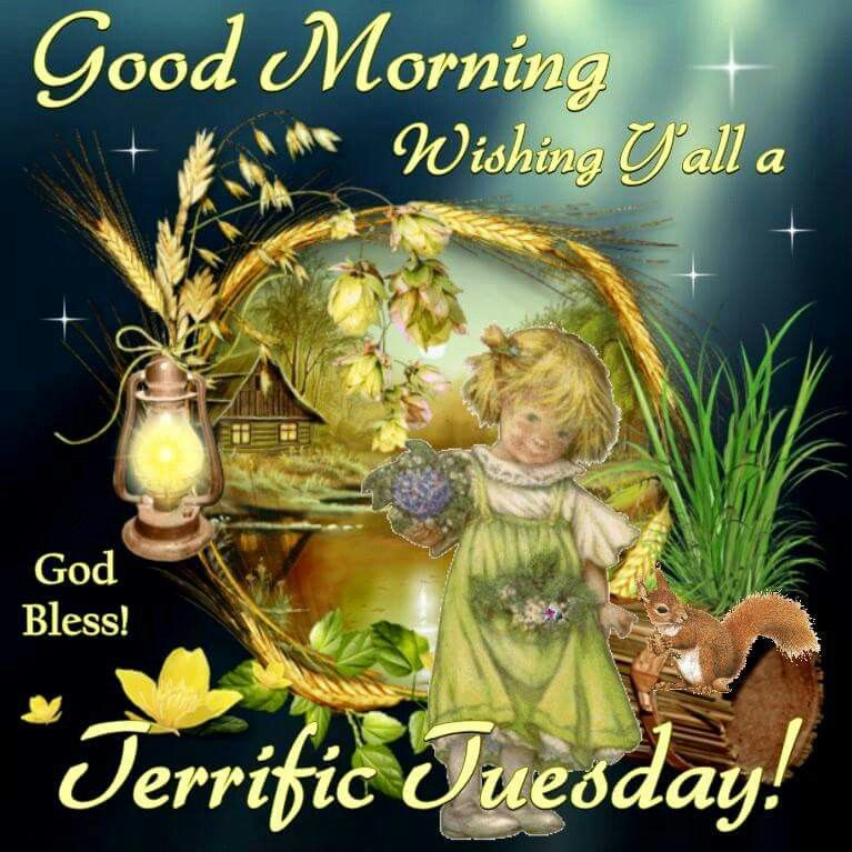 Good Morning Y All : Good morning wishing y all a terrific tuesday pictures