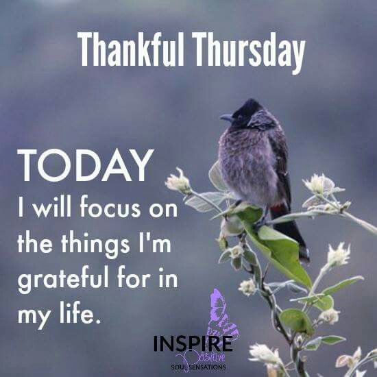 Thursday Positive Quotes Thankful Thursday Positive Quote Pictures, Photos, and Images for  Thursday Positive Quotes