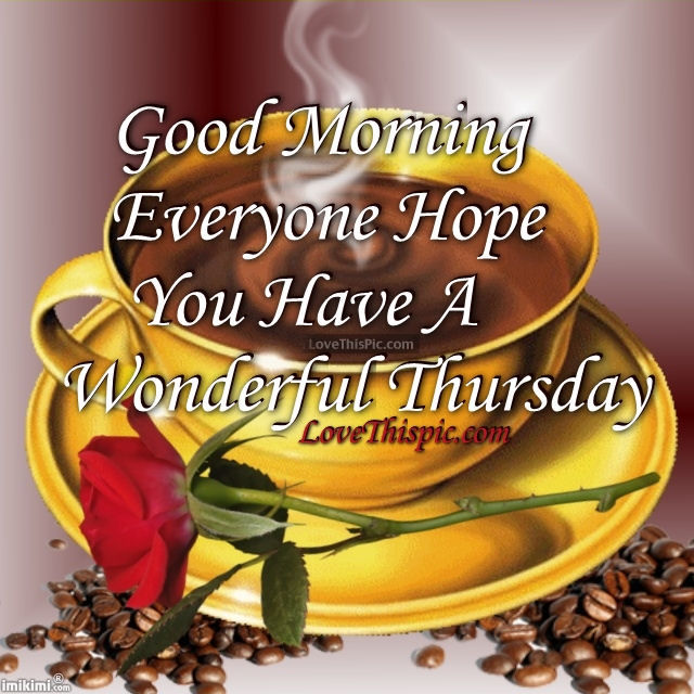 Good Morning Everyone Friends : Good morning everyone hope you have a wonderful thursday