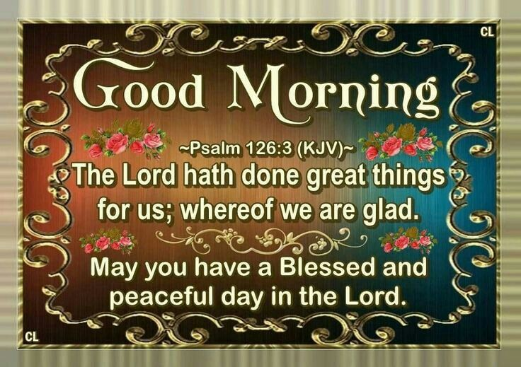 new good morning my friend pictures images and verses