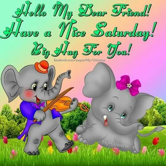 Good Morning Everyone Cute : Hello my dear happy saturday pictures photos and images