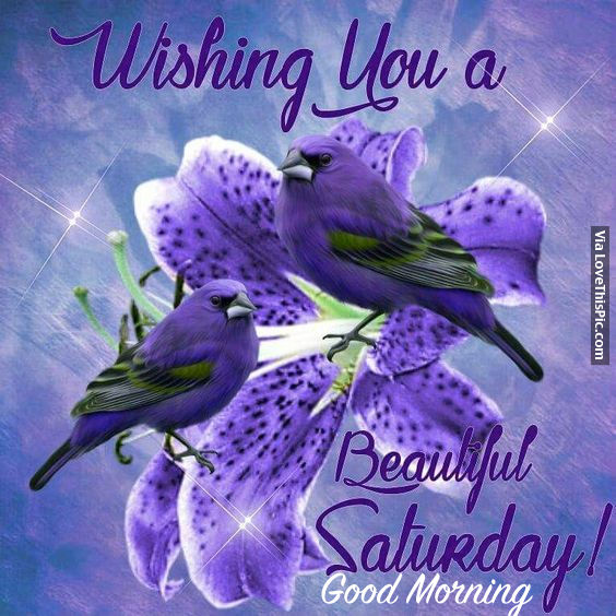 Wishing You A Great Weekend Quotes: Wishing You A Beautiful Saturday! Good Morning Pictures