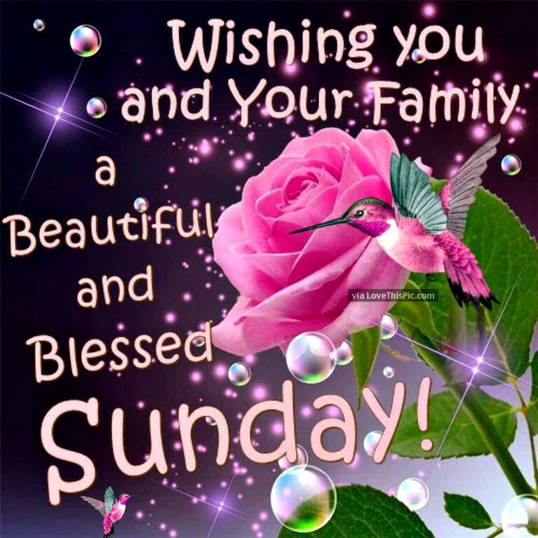 Good Morning Sunday Love Pics : Wishing you and your family a beautiful sunday pictures