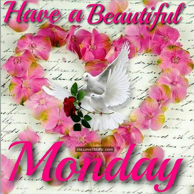 Have A Beautiful Monday Image Pictures Photos And Images