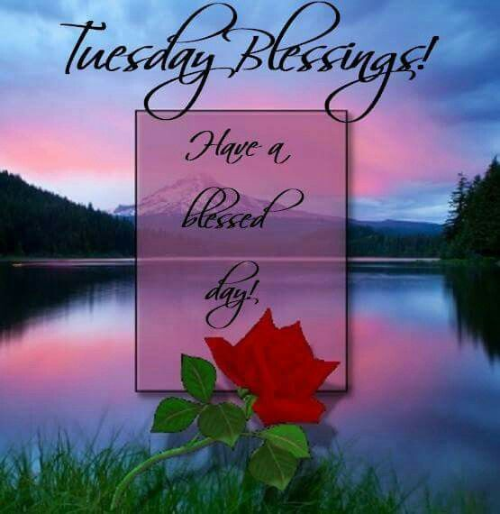 Blessed Day Quotes Amazing Tuesday Blessings Have A Blessed Day Quote Pictures Photos And