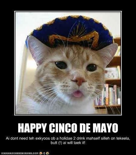 Happy Cinco De Mayo Pictures Photos And Images For Facebook Tumblr Pinterest And Twitter