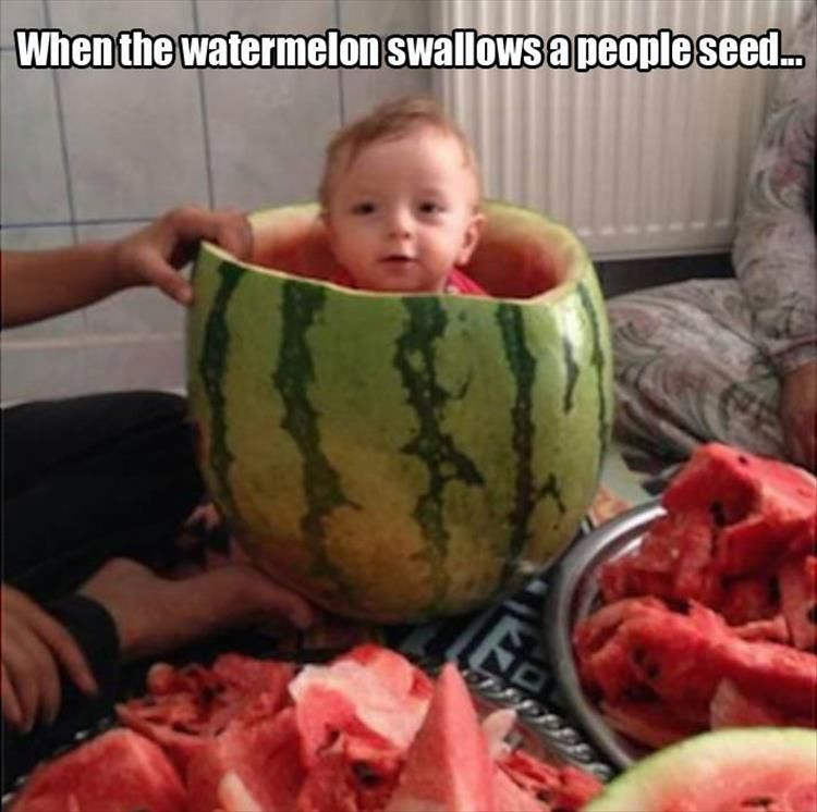 When The Watermelon Swallows A People Seed Pictures