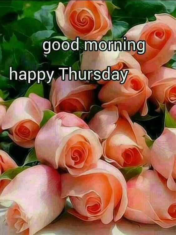 Good Morning Happy Thursday : Good morning thursday images pixshark